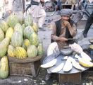 Afghan melon seller