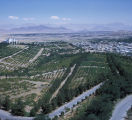 Aerial view of Afghan vineyards