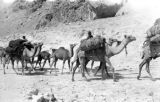 Afghanistan, camel caravan traveling through mountains