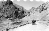 Afghanistan, camel caravan traveling through Hindu Kush mountains