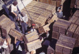 Argentina, porters with crates of oranges in loading dock