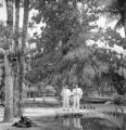 Belém (Brazil), two men stand near trees
