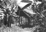 Colombia, shelter in coffee field at Cafetal Aguilar in Antioquia department