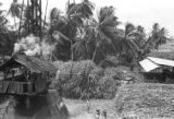 Guyana, crane near large pile of sugarcane at sugar mill at Enmore plantation