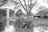 Colombia, pond near equipment shed at Hacienda El Hatico