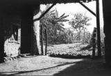 Colombia, view out of entrance of sugar mill in Itagüí