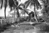 Guyana, laundry drying in the front yard of small stilt house near sea wall at Enmore plantation