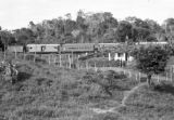 Brazil, train passing through plantation in Bahia state
