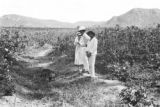 Brazil, Harriet Platt and plantantion owner in irrigation ditch at Sitio São João