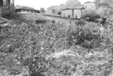Brazil, harvested cotton field and plantation buildings at Sitio São João