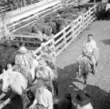 Argentina, men on horses at cattle pen in Buenos Aires