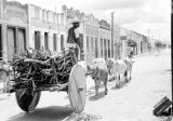 Brazil, man on ox-drawn cart in Belém