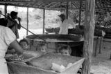 Brazil, family preparing cassava outdoors in Gurupá