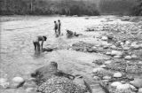 Bolivia, men panning for gold from Tipuani River in La Paz