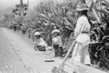 Ecuador, man chopping wood as woman and child watch