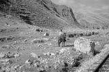 Peru, man on horse near railroad tracks in mountains