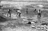 Bolivia, boys swimming in Tipuani River while miners dig mud for gold