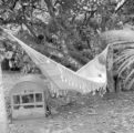 Brazil, person sleeping on hammock in Amazonas