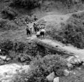 Peru, men repairing bridge in Pisac
