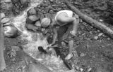 Bolivia, man digging sluice from waterfall to Tipuani River in La Paz