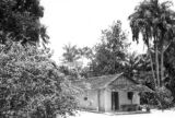Brazil, house next to bougainvillea bush near Santo Antônio