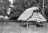 Peru, thatched roof structure covering stove
