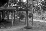 Peru, baskets hanging from porch used to gather tagua nuts