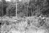Peru, Harriet Platt and man walking along jungle trail
