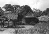 Peru, stilt houses in village