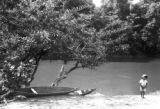 Peru, boy standing near canoes under calabash tree