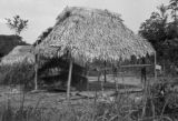 Peru, thatched roof shelters