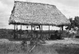 Peru, thatched roof stilt house