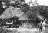 Peru, thatched roof buildings in village