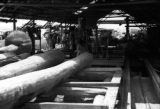 Brazil, workers at lumber sawmill in Pará