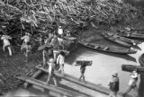 Brazil, laborers loading wood onto ship in Palmares