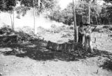 Brazil, workers clearing weeds in Pará