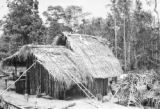 Brazil, thatched roof hut with kitchen