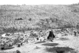 Brazil, view of houses in valley cleared of trees