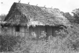 Brazil, wood cutter's hut in Palmares