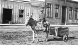 Antofagasta (Chile), boy riding donkey through town