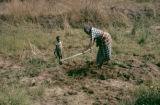 Africa, woman working in field with child
