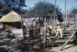 Zimbabwe, hut and animal corral in kraal