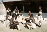 Zimbabwe, Ndebele men with drums in ceremonial dress