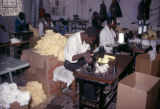 Zimbabwe, workers operating sewing machines at textile mill