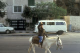 Cairo (Egypt), boy on donkey near stables