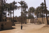 Egypt, farm village