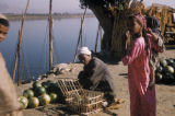 Egypt, man selling watermelons on the shore
