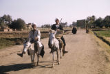 Egypt, men riding donkeys on a rural road