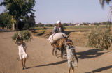 Egypt, people on a rural road