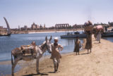 Egypt, view of the river bank with people carrying goods